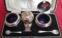 Cased Sterling Silver Cruet Set (2 of 6)