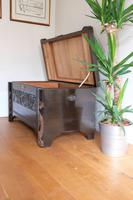 Chinese relief carved camphorwood coffer with an ebonised finish (9 of 23)