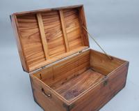 19th Century Camphor Wood Trunk (3 of 8)