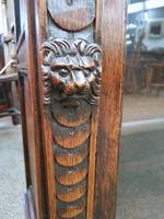 Lion Mask Face Bookcase (3 of 8)