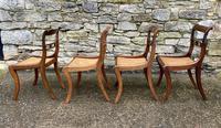 Set of 4 Regency Rosewood Sabre Leg Dining Chairs (7 of 15)