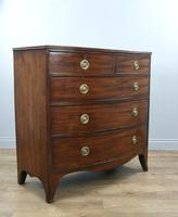 Superb Georgian Mahogany Bow Front Chest of Drawers (3 of 4)