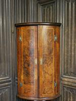 Antique Burr Walnut Corner Cupboard (2 of 9)