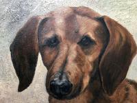 20th Century English Portrait Dachshund Sausage Animal Dog Oil Painting (3 of 12)