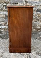 Antique Victorian Mahogany Bedside Pot Cupboard (5 of 16)