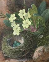 Charles Henry Slater Pair of Watercolours 'Plums, Pomegranate, Primroses & Birds Nest' (3 of 3)