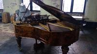 Majestic Emil Pauer Grand Piano of the Finest Quality (4 of 7)