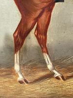 Victorian Oil Painting Chestnut Horse Portrait In Stable Signed Edwin Loder (25 of 42)