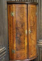 Antique Burr Walnut Corner Cupboard (3 of 9)