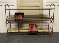 Stylish French Gilt Metal Book Shelves (8 of 16)