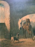 Aft: Emil Volkers Beautiful Vintage Framed Equestrian Print On Board (3 of 12)