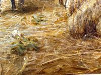 "Watercolour ""Tending The Sheep"" By Bertha Rhodes RA Rca Exh 1905 -1912 (22 of 41)"
