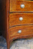 Plum Pudding Mahogany Serpentine Chest of Drawers (3 of 8)