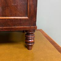 Spectacular Small Regency Antique Mahogany Collectors Cabinet (3 of 8)