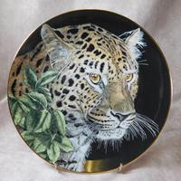 Set of Six Royal Doulton Limited Edition Collectors Plates (3 of 15)