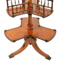 Victorian Satinwood Book Stand (8 of 8)