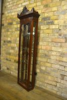 Pair of Victorian Jeweller's Wall Cabinets (7 of 10)