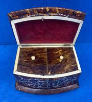 Victorian Tortoiseshell Tea Caddy with Mother of Pearl Inlay (19 of 20)