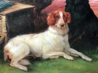 """19th Century Oil Painting Sporting """"Game Dogs"""" Signed Robert Cleminson (3 of 48)"""