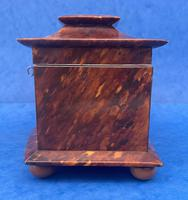 Victorian Tortoiseshell Tea Caddy with Mother of Pearl Inlay (11 of 20)