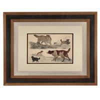 Hand Coloured 'Working Dog' Lithograph. Goldsmith 1875 (4 of 4)