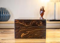 Decorative Coromandel Table Box 1850 (5 of 8)