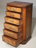 Very Well Figured Early 19th Century Wellington Chest (4 of 5)