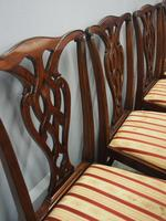 Set of 12 Georgian Style Mahogany Dining Chairs (10 of 12)