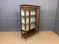 Edwardian Inlaid Mahogany & Satinwood Display Cabinet (6 of 12)
