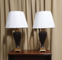 Pair of Urn Shaped Lamps (2 of 8)