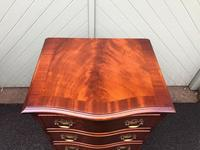 Serpentine Mahogany Slim Chest Drawers (7 of 8)