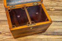Indian Rosewood Twin Tea Caddy 1850 (3 of 8)