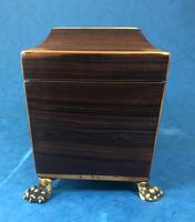 Regency Black Walnut Sarcophagus Twin Section Tea Caddy (5 of 11)