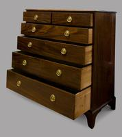 19th Century Mahogany Chest of Drawers (2 of 4)