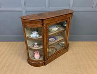 Victorian Burr Walnut Glazed Side Cabinet (12 of 15)