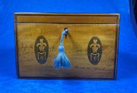 George III Satinwood Twin Tea Caddy with Prince of Wales Inlay (10 of 15)