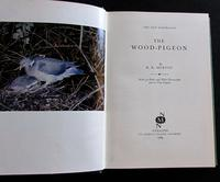 1965 1st Edition New Naturalist No 20 The Wood Pigeon by R K Murton with Original Dust Jacket (2 of 5)