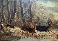 'Chasing The Deer' Beautiful 19th Century Game Hunting Moonlit Landscape Oil Painting (3 of 14)