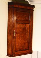 Antique Country Oak panelled Corner Cupboard. Circa 1800 (2 of 12)