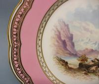 Superb Davenport Cabinet Plate c.1870 (3 of 7)