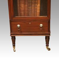 Regency Mahogany Library Cabinet (6 of 10)