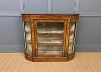 Victorian Burr Walnut Glazed Side Cabinet (3 of 15)