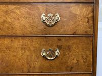 Queen Anne Burr Walnut Chest of 5 Drawers (4 of 12)