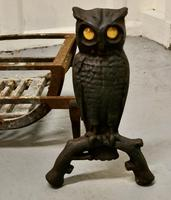 Quirky Model Owl Iron Andirons with Grate (7 of 7)