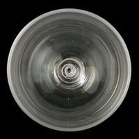 Pair of Georgian Opaque Twist Stem Rummers (5 of 7)