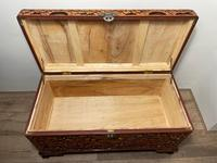 Chinese Camphor Wood Carved Birds & Flowers Chest Coffee Table (20 of 34)