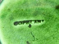 Copeland Majolica 'Vine Leaf' Serving Dish c.1860 (3 of 3)