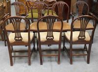 1900's Mahogany Set 8 Hoop Dining chairs with Pop out Seats in Gold (3 of 3)