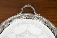 Very Good Quality Early 20th Century Oval Tray (2 of 5)