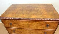 Burr Walnut Chest of Drawers (6 of 8)